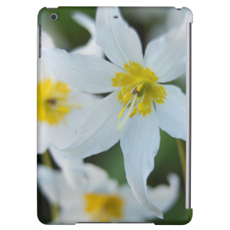 Avalanche Lilies at Paradise Park iPad Air Cover