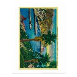 Avalon Bay, Santa Catalina Island from Skyline Postcard