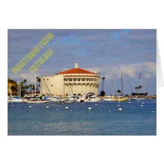 Avalon Harbor Cards