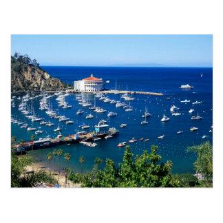 Avalon Harbor Catalina Postcard