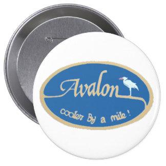 Avalon NJ Pins