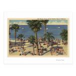 Avalon View of Beach w/ Sunbathers Post Card