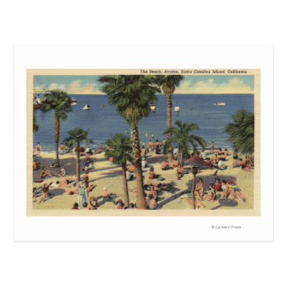 Avalon View of Beach w/ Sunbathers Postcard