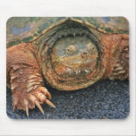 Avaro de MousePad de la tortuga de rotura Alfombrillas De Ratones