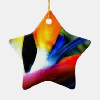 Ave del paraíso adorno navideño de cerámica en forma de estrella