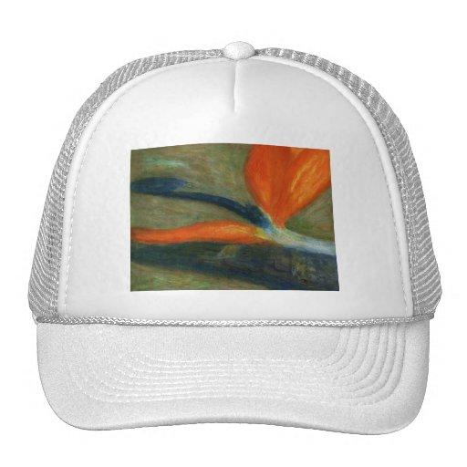 Ave del paraíso, gorra