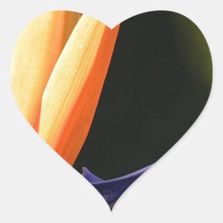 Ave del paraíso pegatina en forma de corazón