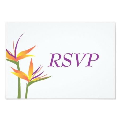 Ave del paraíso que casa la tarjeta de RSVP Invitación 8,9 X 12,7 Cm