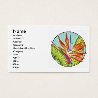 Ave del paraíso, tarjetas de visita