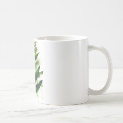 Ave del paraíso taza de café