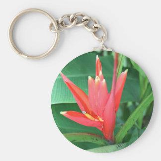 Ave del paraíso tropical de la flor llavero redondo tipo pin