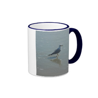 ave marina en la foto de la playa por los gbillips taza de café