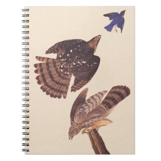 Ave rapaz del halcón de los toneleros de Audubon Libro De Apuntes