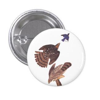 Ave rapaz del halcón de los toneleros de Audubon Pin Redondo De 1 Pulgada