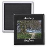 Avebury, Wiltshire, Inglaterra. Árbol y trayectori Imán Cuadrado