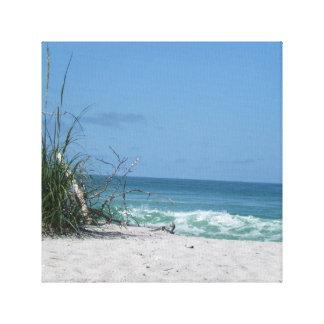 Avena del mar en la playa lienzo envuelto para galerías