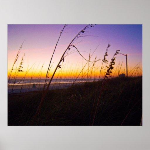 Avena del mar en la salida del sol en Daytona Beac Póster