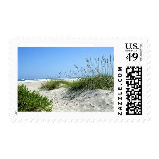 Avena del mar en Ocracoke Timbres Postales