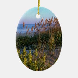 Avena del mar y anciano de la playa adorno ovalado de cerámica