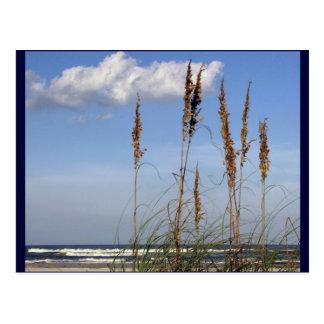 Avena, ondas y cielo del mar postal