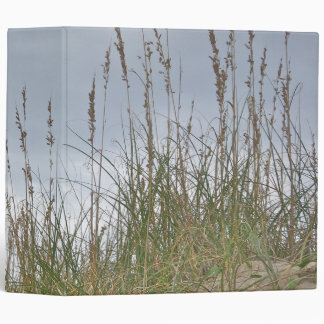 Avena Outer Banks NC del mar de la carpeta