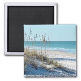 Avena serena del mar de la playa y agua azul imán para frigorifico
