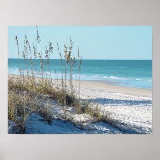Avena serena del mar de la playa y agua azul póster