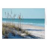 Avena serena del mar de la playa y agua azul felicitacion