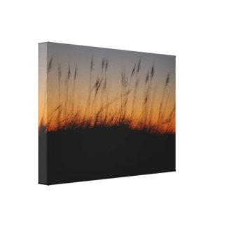 Avena y dunas del mar en la puesta del sol impresiones en lienzo estiradas
