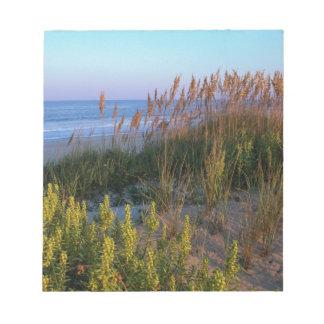 Avena y playa del mar bloc de notas