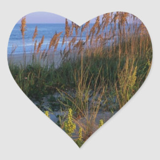 Avena y playa del mar pegatina corazón