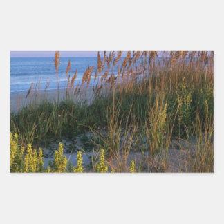Avena y playa del mar rectangular pegatinas
