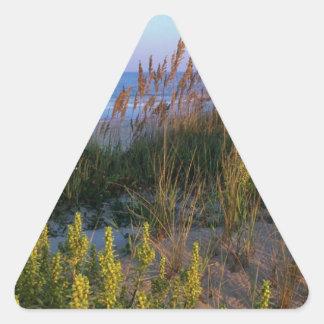 Avena y playa del mar calcomanía de trianguladas