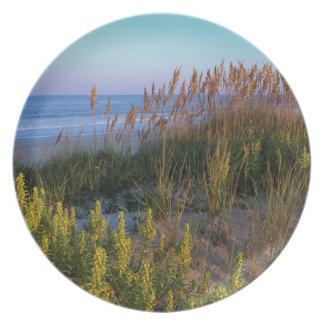 Avena y playa del mar platos de comidas