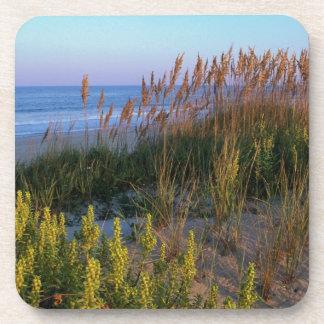Avena y playa del mar posavasos de bebida