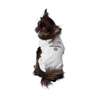 Halloween Themed Avenged Pagan Cheeky Witch® Chihuahua Dog T-Shirt