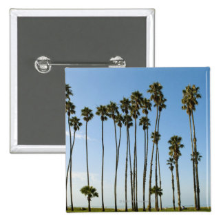 Avenida de Cabrillo, Santa Barbara, California Pin Cuadrado
