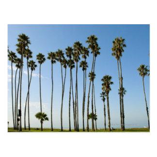 Avenida de Cabrillo Santa Barbara California Tarjeta Postal