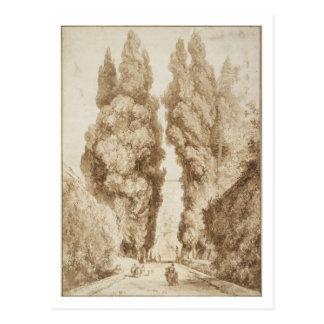 Avenida de Cypress en el chalet d Este Tivoli por Postal