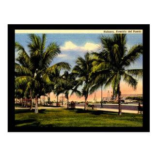 Avenida del puerto vintage de La Habana Cuba Tarjetas Postales