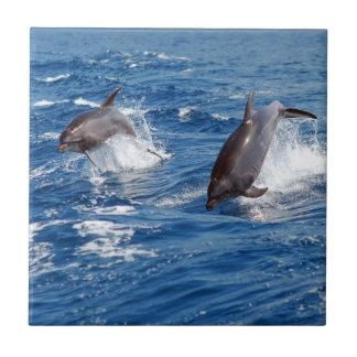 Aventura del delfín azulejo cuadrado pequeño