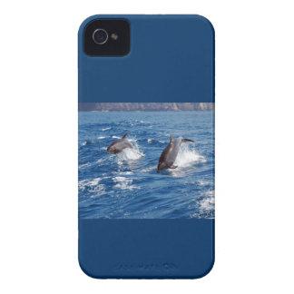 Aventura del delfín iPhone 4 Case-Mate protectores
