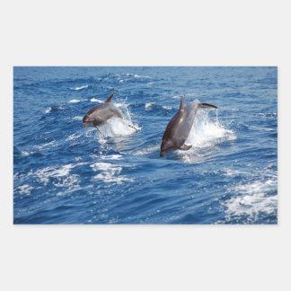 Aventura del delfín pegatina rectangular