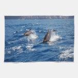 Aventura del delfín toalla de mano
