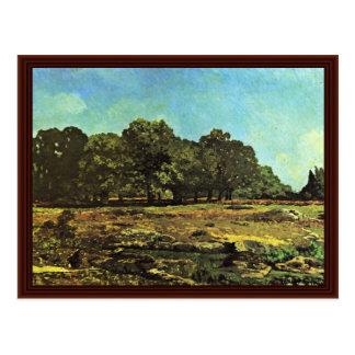 Avenue Of Chestnut Trees Near La Celle-Saint-Cloud Postcards