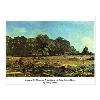 Avenue Of Chestnut Trees Near La Celle-Saint-Cloud Post Cards