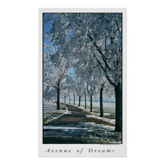 Avenue of Dreams Poster