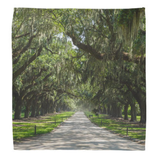 Avenue Of Oaks Bandana