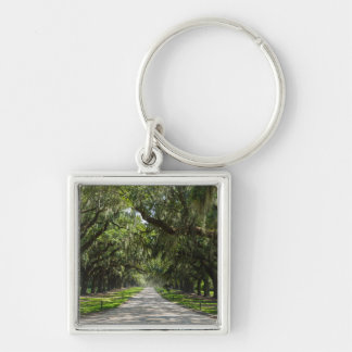 Avenue Of Oaks Keychain