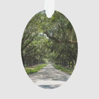 Avenue Of Oaks Ornament